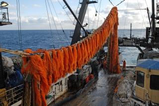 Сбербанк и Сахалинская область создадут Рыбную биржу