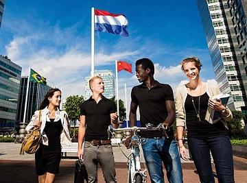 Как зарегистрировать компанию в Нидерландах