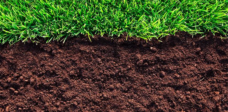 Свойства и состав плодородного грунта