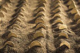 ЦСР Кудрина предлагает провести земельную реформу