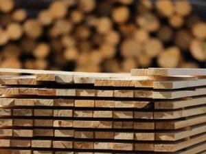 В Японии планируют использовать древесину для производства автомашин