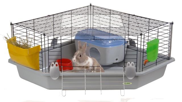 Как обустроить клетку для кроликов?