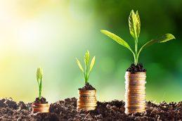 Добавь себе стоимости: как получить высокий доход в валюте