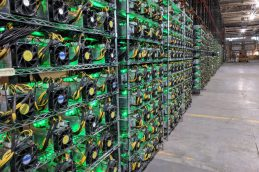 Участники блокчейн-рынка просят статус самозанятых для майнеров криптовалют