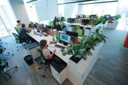 Исследование: работодатели планируют повышать зарплаты