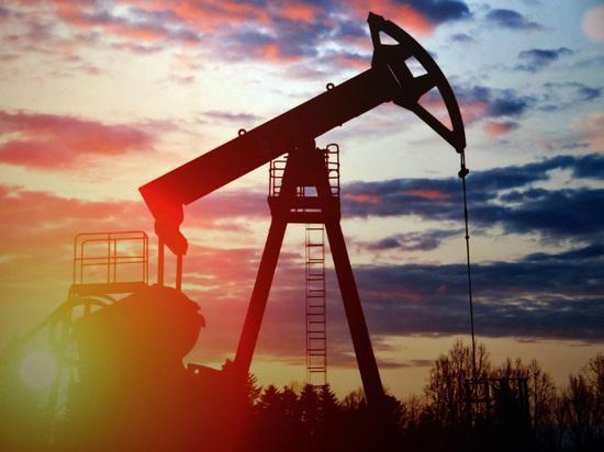 Экономисты оценили теорию «нефтяного сговора» против России