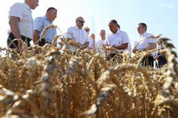 Гримасы белорусской экономики: что нужно Лукашенко от России
