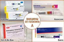 Вакцина против гепатита А – когда и как вакцинировать?