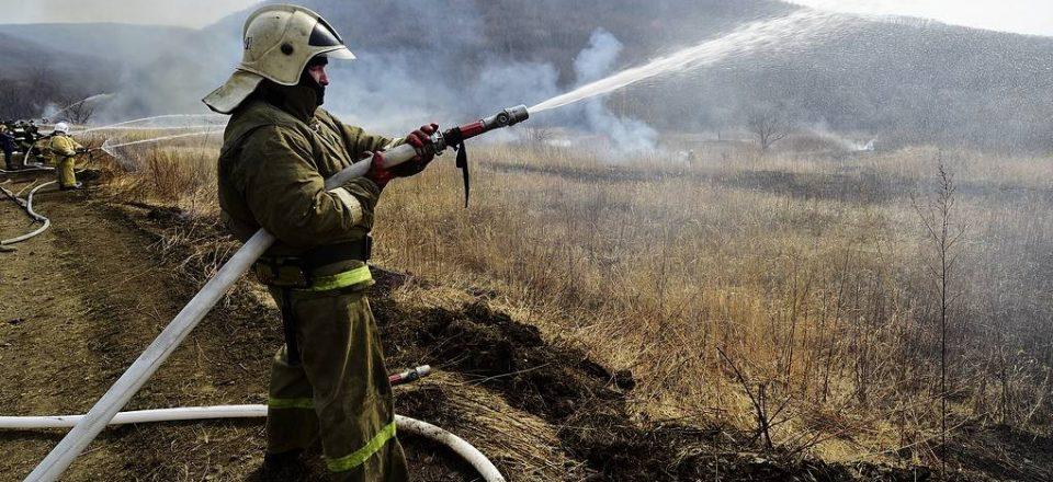 В Минприроды заявили, что повторения торфяных пожаров 2010 года в России не будет