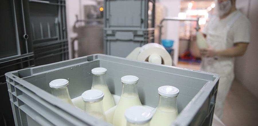 Правительство упростило маркировку молочной продукции